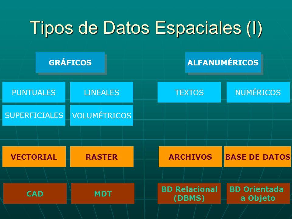 Tipos de Datos Espaciales (I)