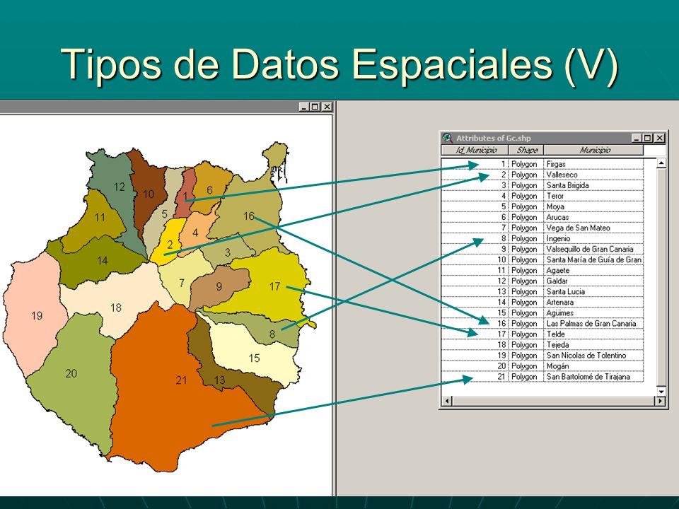 Tipos de Datos Espaciales (V)
