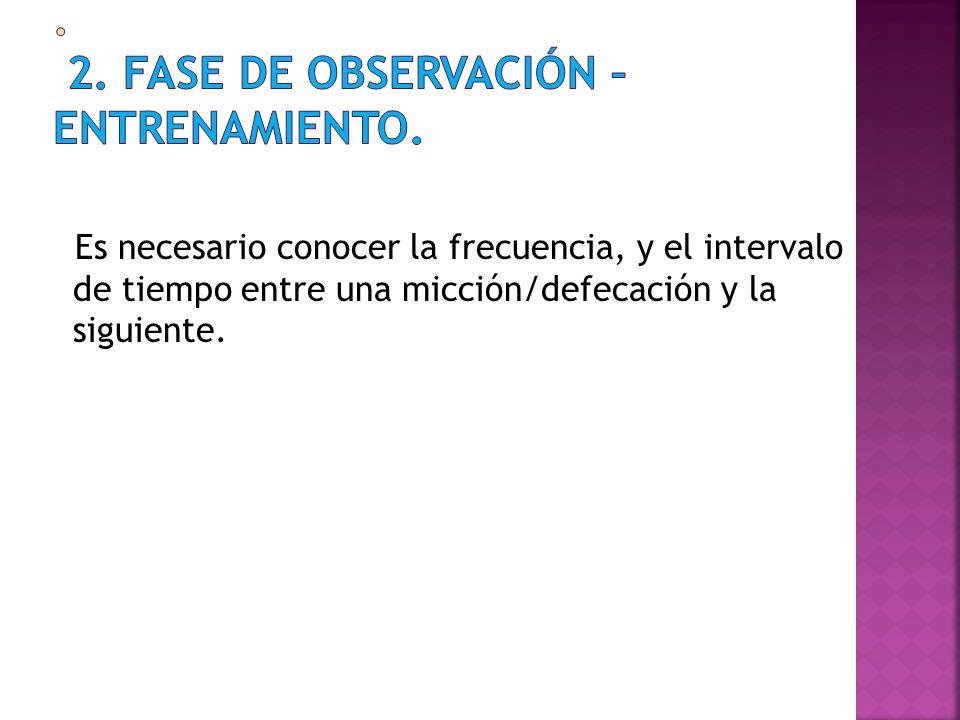. 2. FASE DE OBSERVACIÓN – ENTRENAMIENTO.