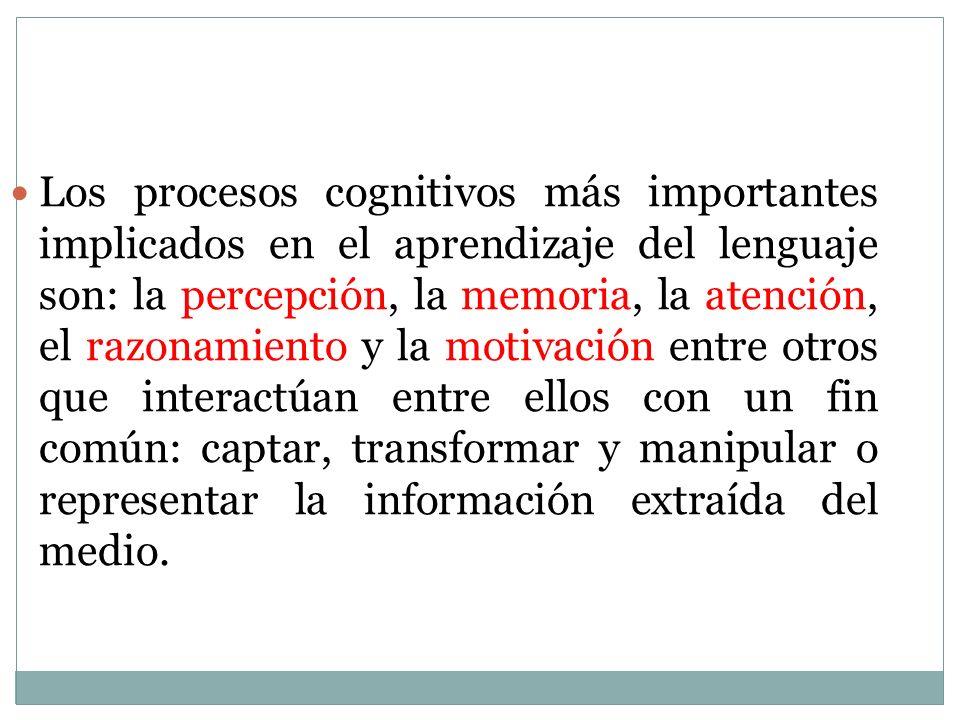 Los procesos cognitivos más importantes implicados en el aprendizaje del lenguaje son: la percepción, la memoria, la atención, el razonamiento y la motivación entre otros que interactúan entre ellos con un fin común: captar, transformar y manipular o representar la información extraída del medio.