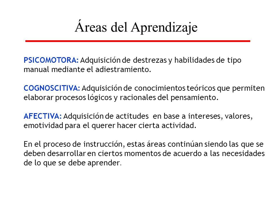 Áreas del Aprendizaje PSICOMOTORA: Adquisición de destrezas y habilidades de tipo manual mediante el adiestramiento.