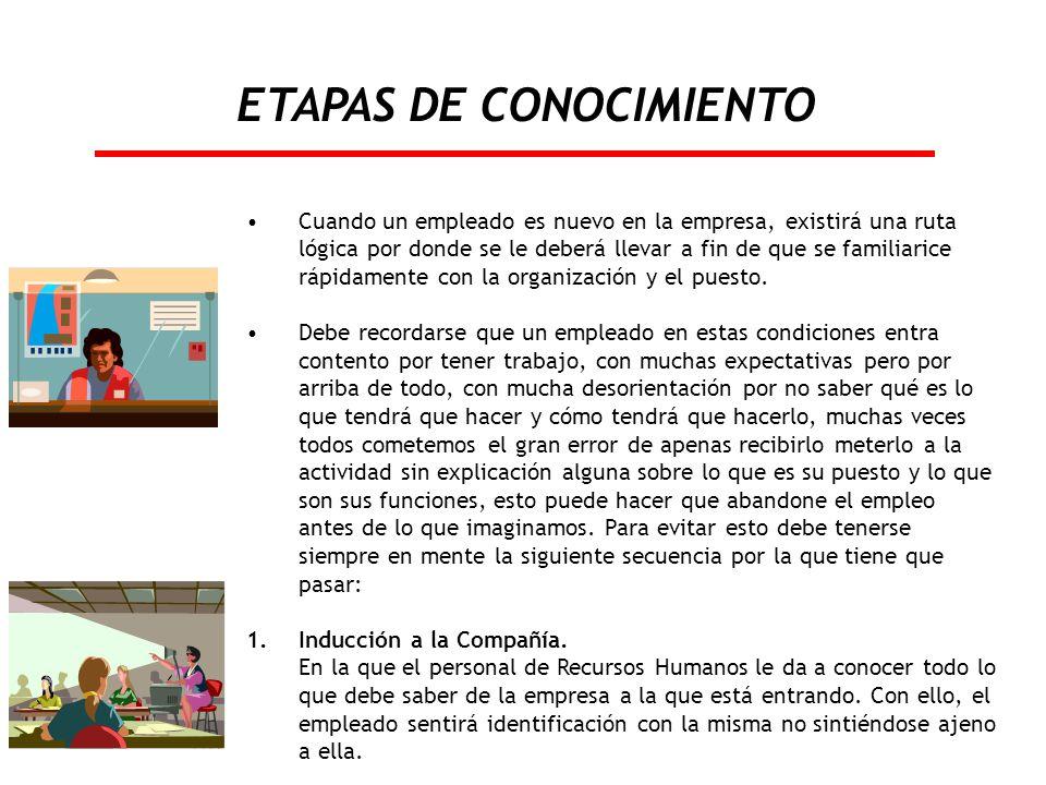 ETAPAS DE CONOCIMIENTO