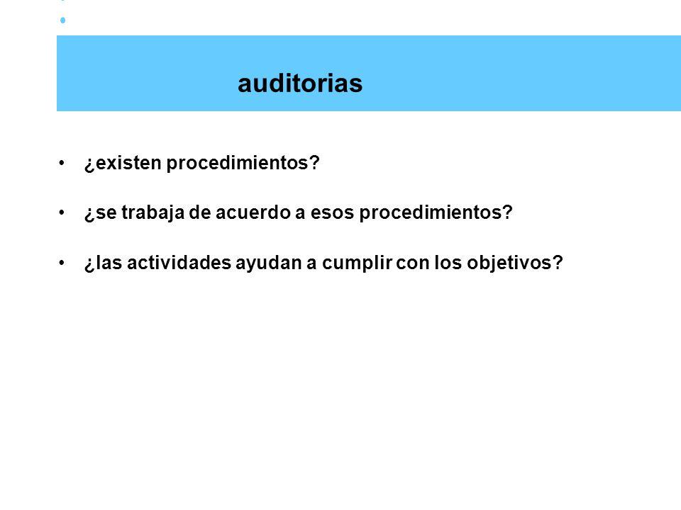 auditorias ¿existen procedimientos