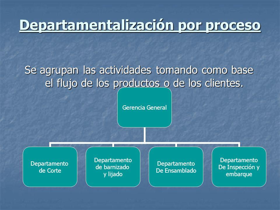 Departamentalización por proceso