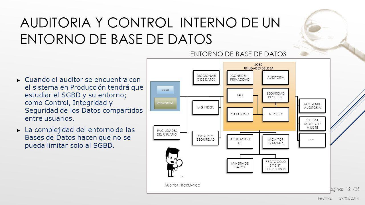 Auditoria y Control Interno de un entorno de Base de Datos