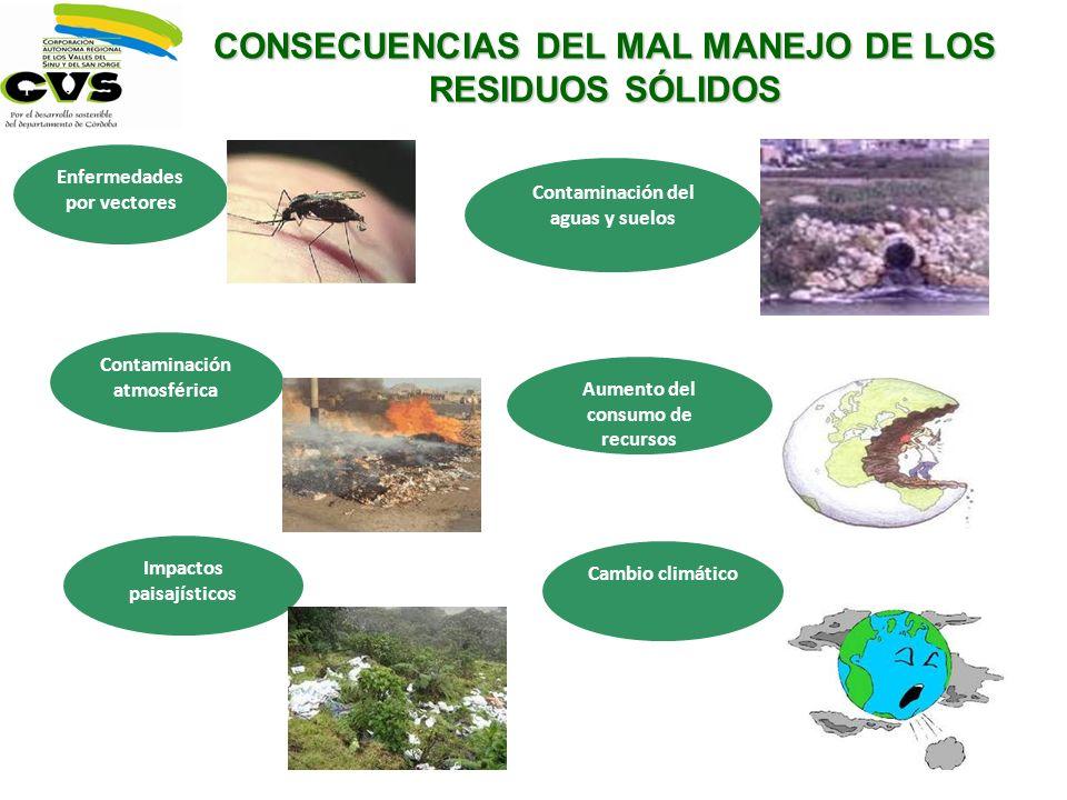 CONSECUENCIAS DEL MAL MANEJO DE LOS RESIDUOS SÓLIDOS