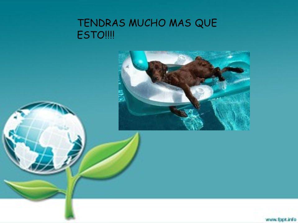 TENDRAS MUCHO MAS QUE ESTO!!!!