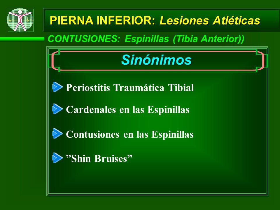 Sinónimos PIERNA INFERIOR: Lesiones Atléticas
