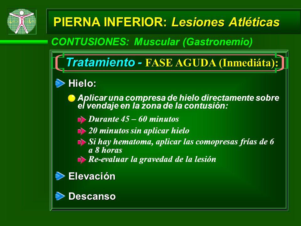 Tratamiento - FASE AGUDA (Inmediáta):