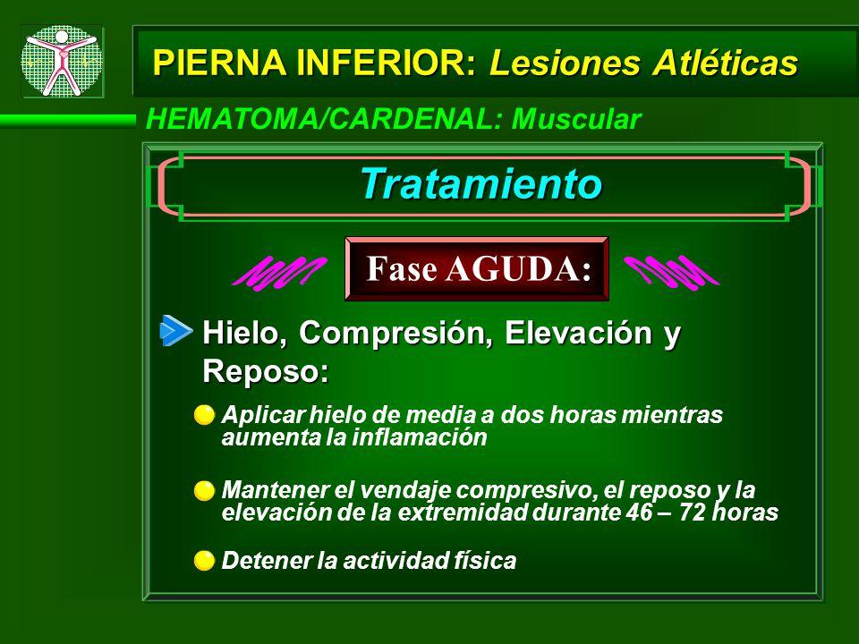 Tratamiento Fase AGUDA: PIERNA INFERIOR: Lesiones Atléticas