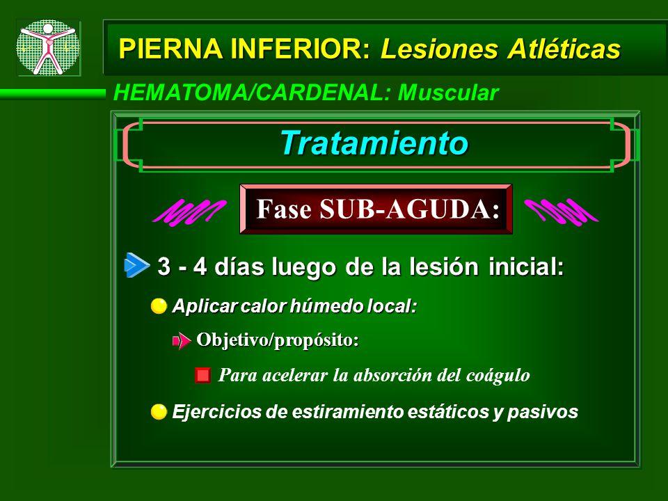 Tratamiento Fase SUB-AGUDA: PIERNA INFERIOR: Lesiones Atléticas