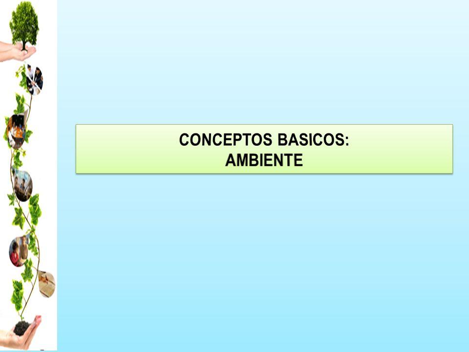 CONCEPTOS BASICOS: AMBIENTE
