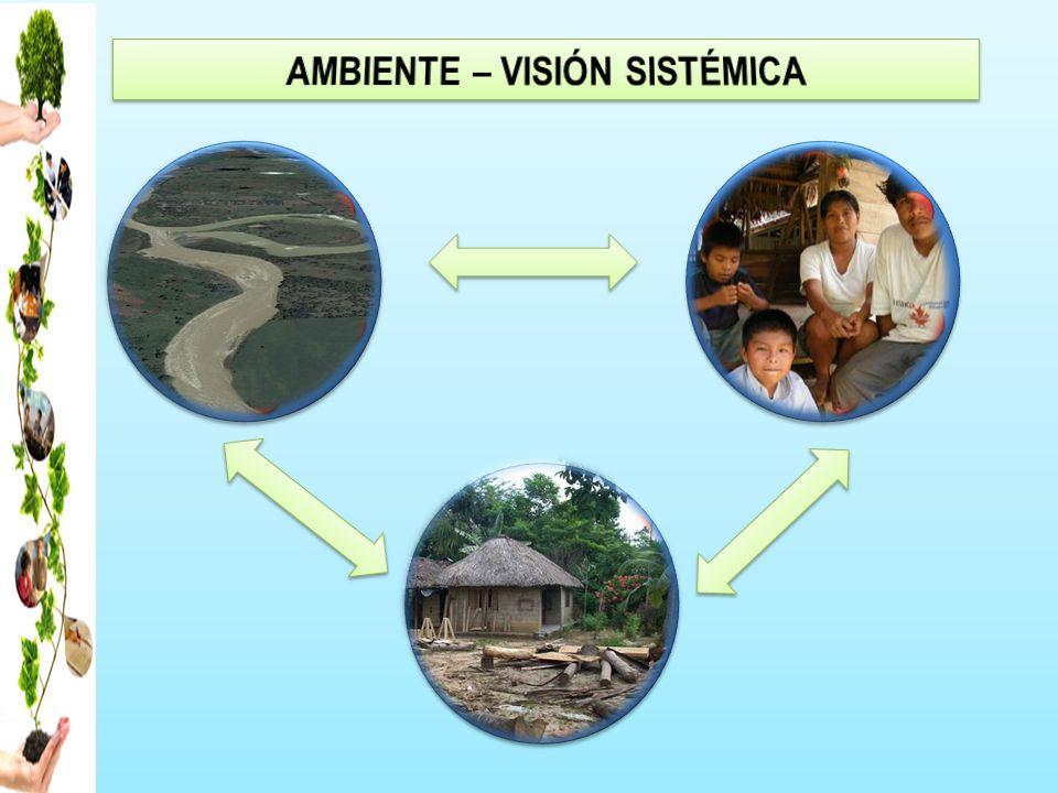 AMBIENTE – VISIÓN SISTÉMICA