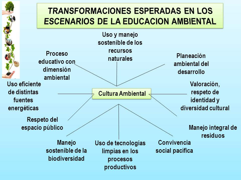 TRANSFORMACIONES ESPERADAS EN LOS ESCENARIOS DE LA EDUCACION AMBIENTAL