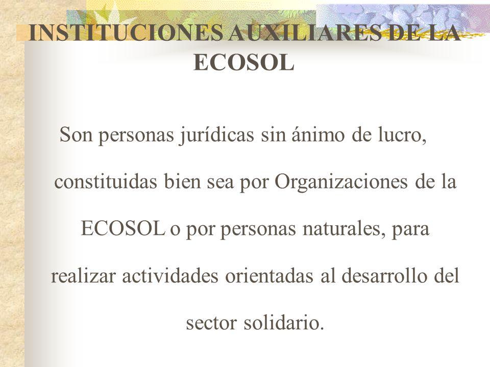 INSTITUCIONES AUXILIARES DE LA ECOSOL