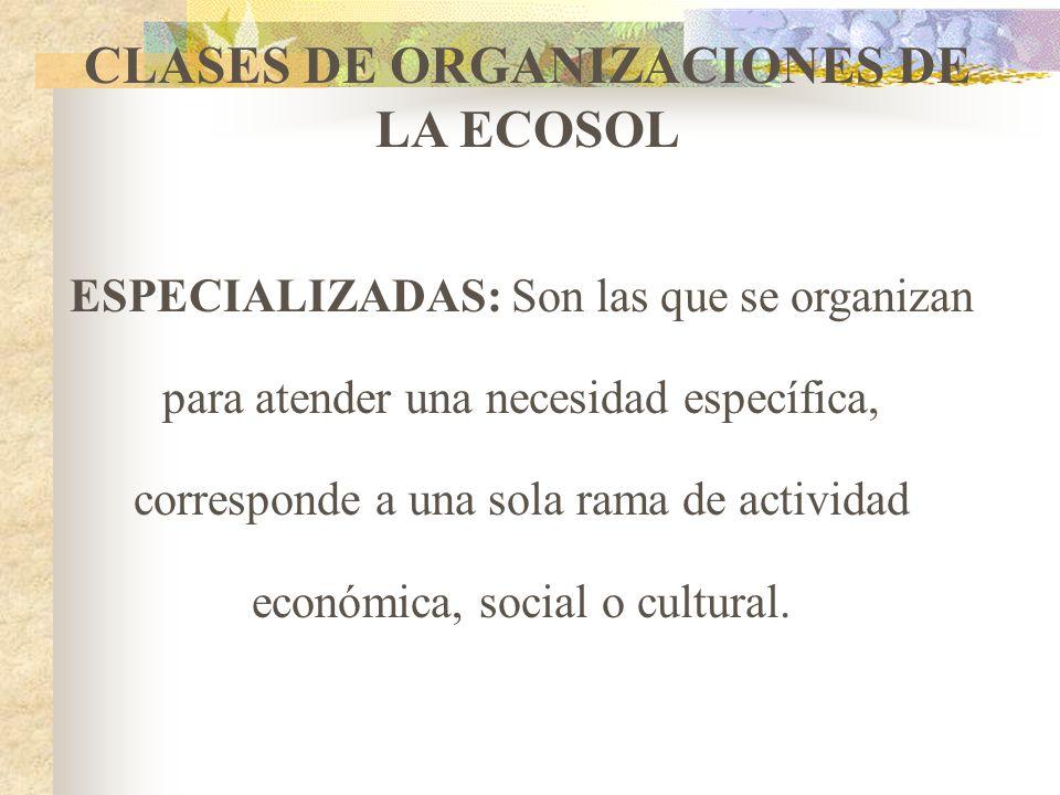 CLASES DE ORGANIZACIONES DE LA ECOSOL