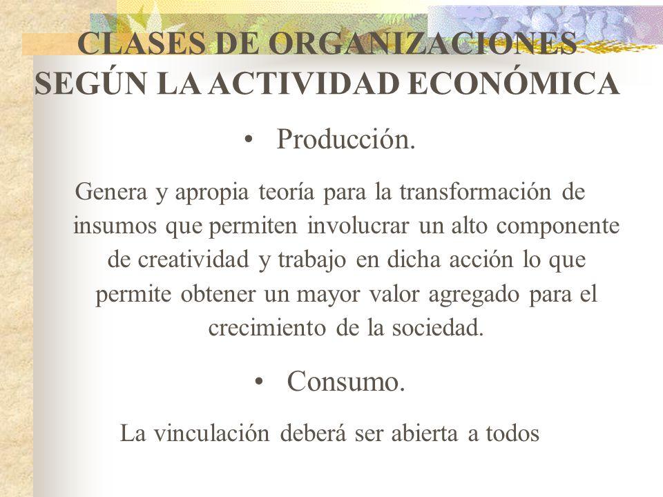 CLASES DE ORGANIZACIONES SEGÚN LA ACTIVIDAD ECONÓMICA