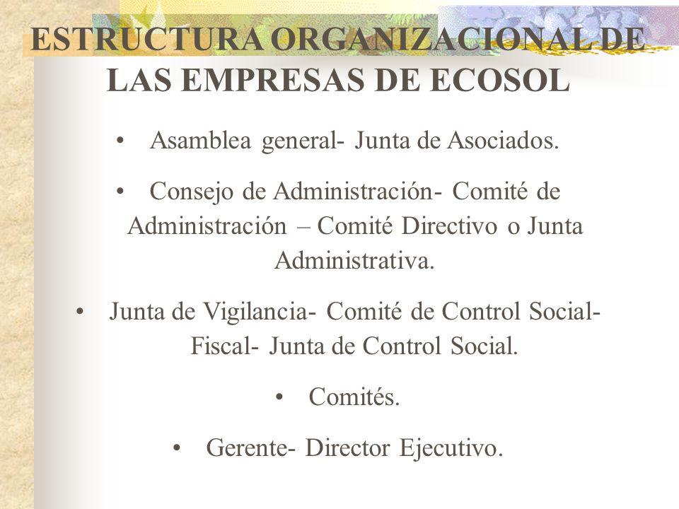 ESTRUCTURA ORGANIZACIONAL DE LAS EMPRESAS DE ECOSOL