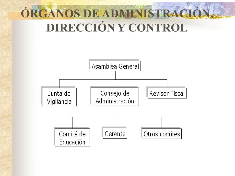 ÓRGANOS DE ADMINISTRACIÓN, DIRECCIÓN Y CONTROL