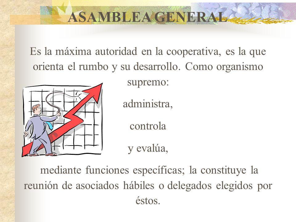 ASAMBLEA GENERAL Es la máxima autoridad en la cooperativa, es la que orienta el rumbo y su desarrollo. Como organismo supremo: