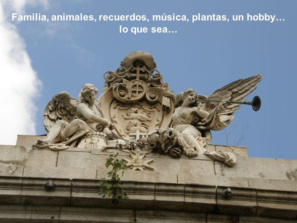 Familia, animales, recuerdos, música, plantas, un hobby…