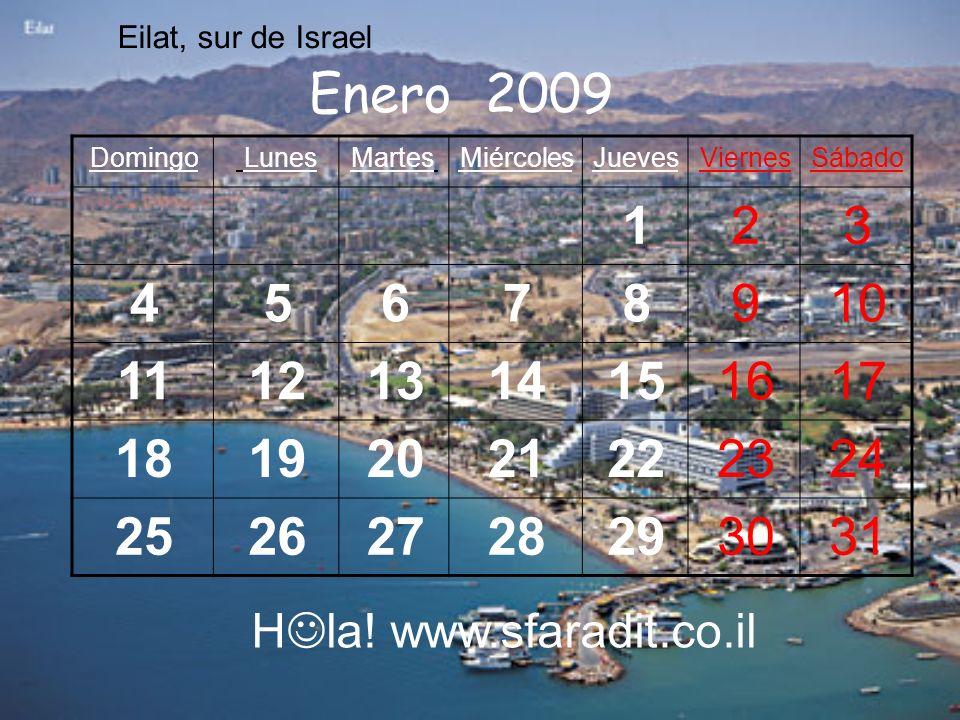 Eilat, sur de Israel Enero 2009. Sábado. Viernes. Jueves. Miércoles. Martes. Lunes. Domingo.