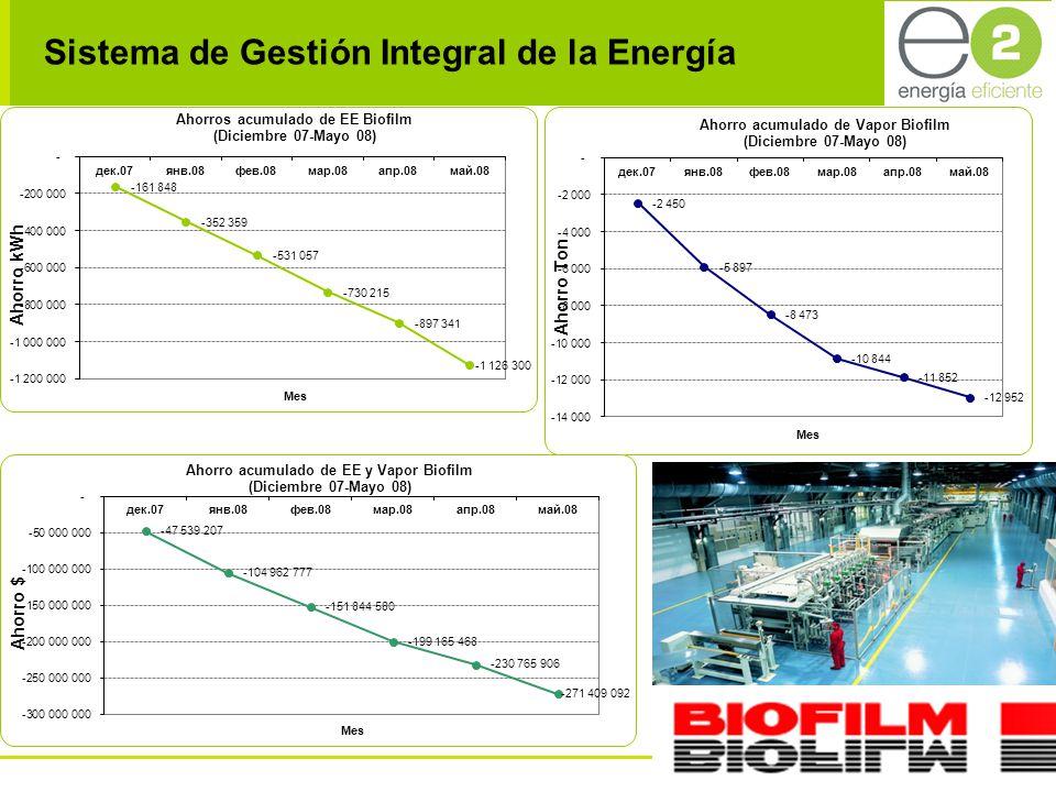 Sistema de Gestión Integral de la Energía