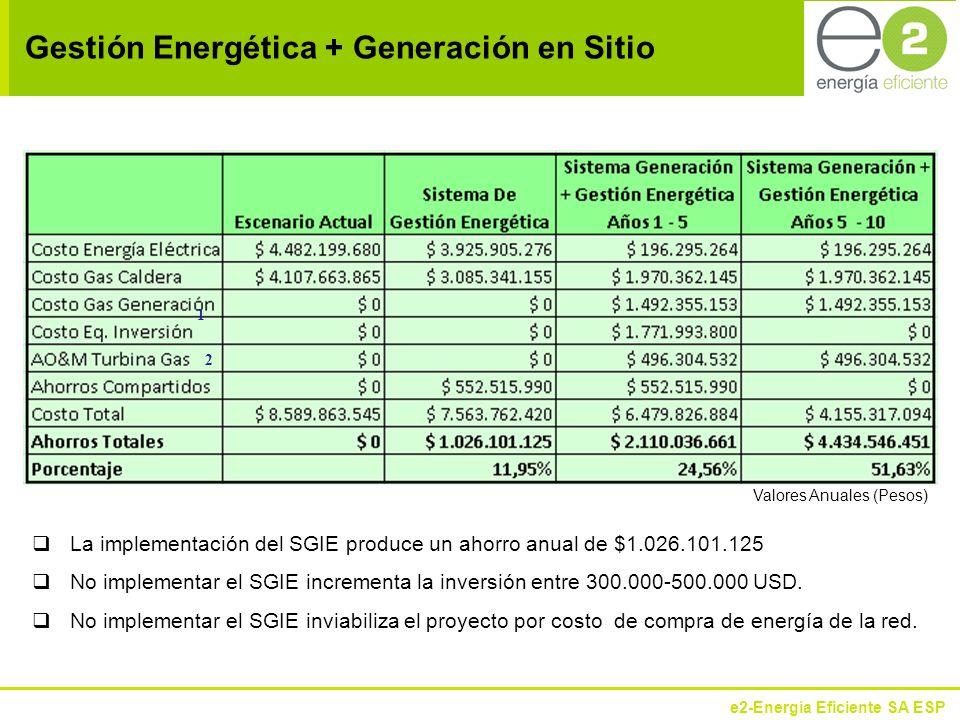 Gestión Energética + Generación en Sitio