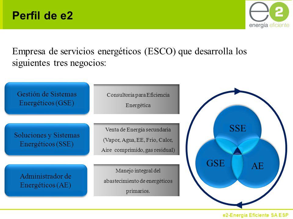 Perfil de e2 Empresa de servicios energéticos (ESCO) que desarrolla los siguientes tres negocios: Gestión de Sistemas Energéticos (GSE)