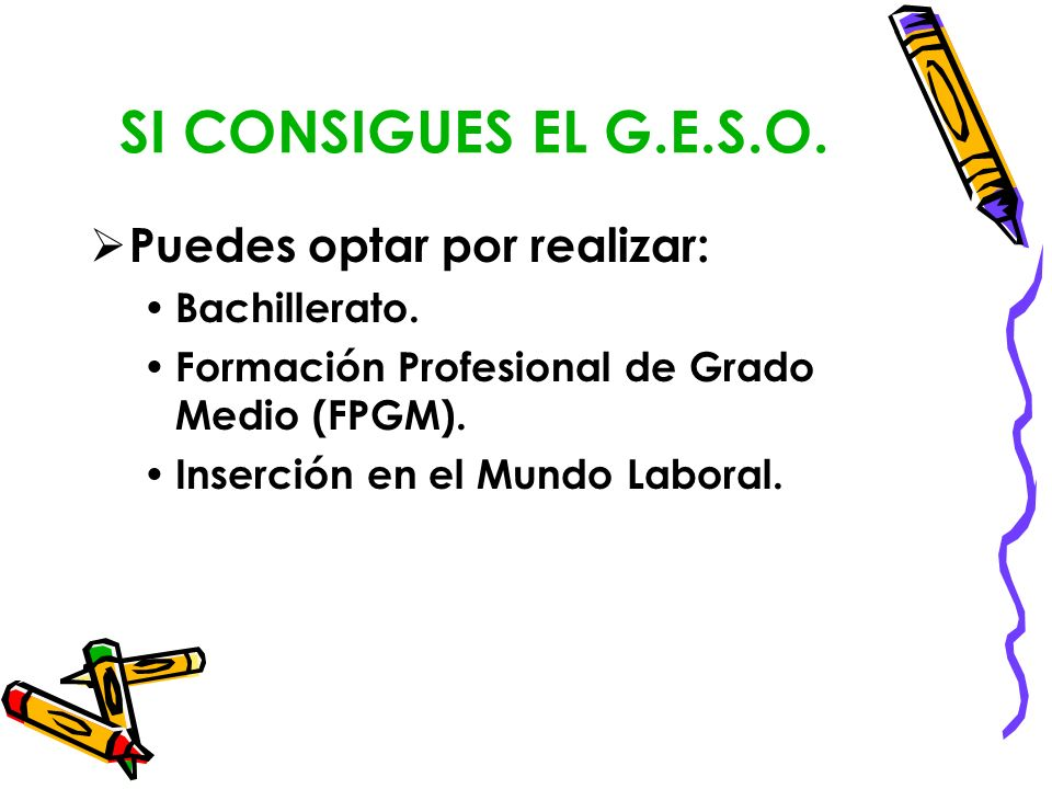 SI CONSIGUES EL G.E.S.O. Puedes optar por realizar: Bachillerato.