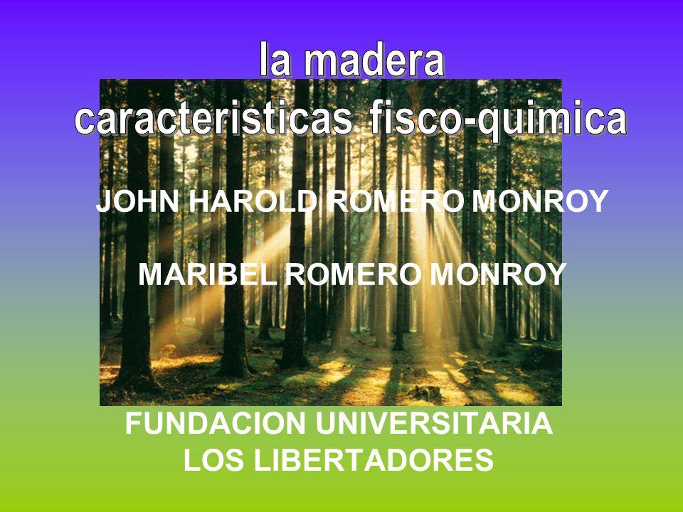JOHN HAROLD ROMERO MONROY MARIBEL ROMERO MONROY