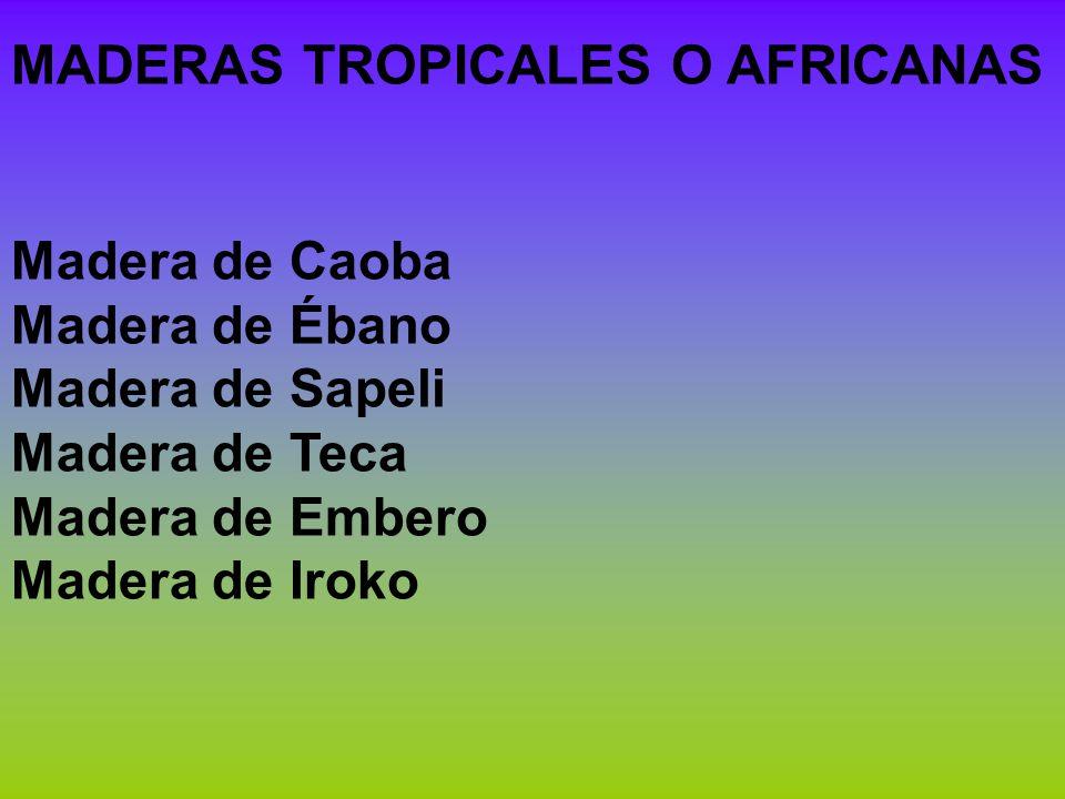 MADERAS TROPICALES O AFRICANAS