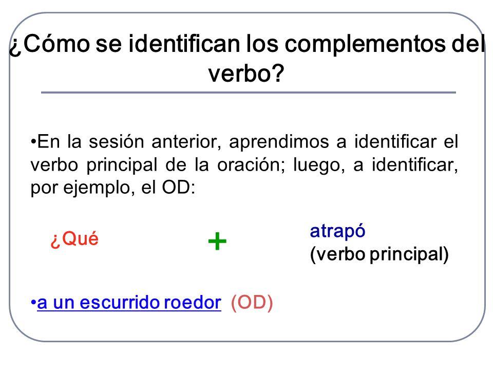 ¿Cómo se identifican los complementos del verbo