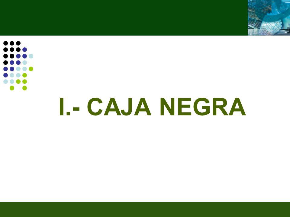 I.- CAJA NEGRA