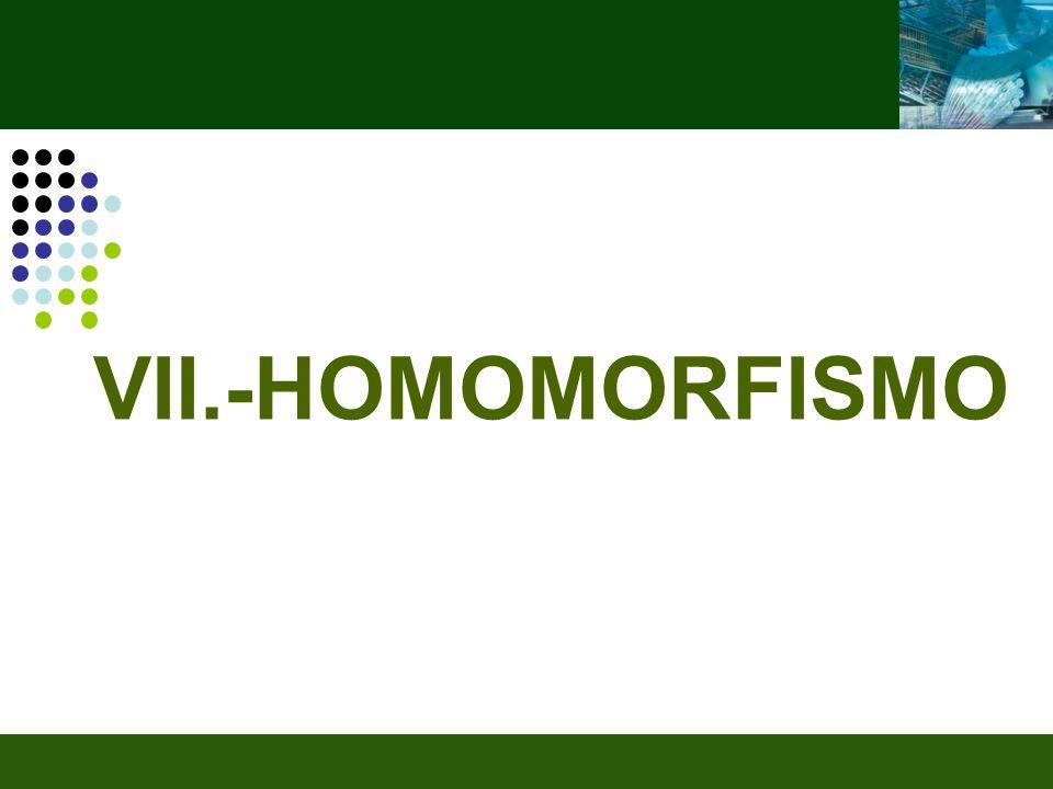 VII.-HOMOMORFISMO