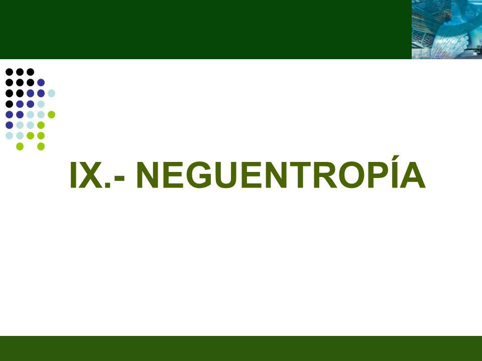 IX.- NEGUENTROPÍA