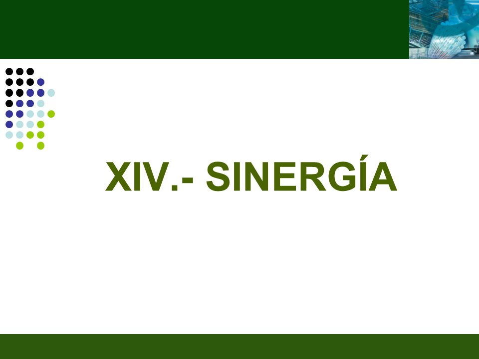 XIV.- SINERGÍA