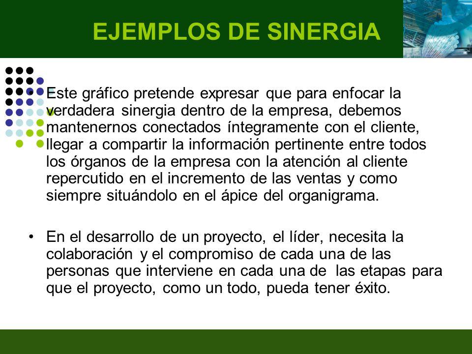 EJEMPLOS DE SINERGIA
