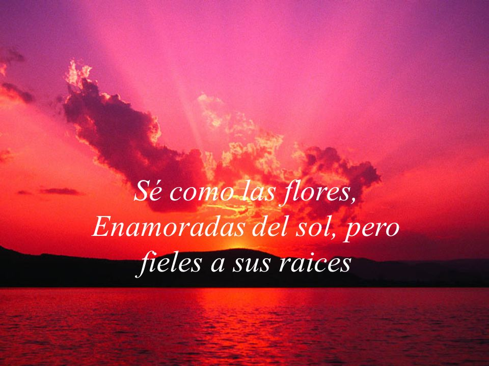 Sé como las flores, Enamoradas del sol, pero fieles a sus raices