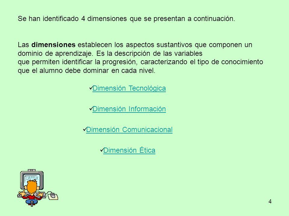 Se han identificado 4 dimensiones que se presentan a continuación.