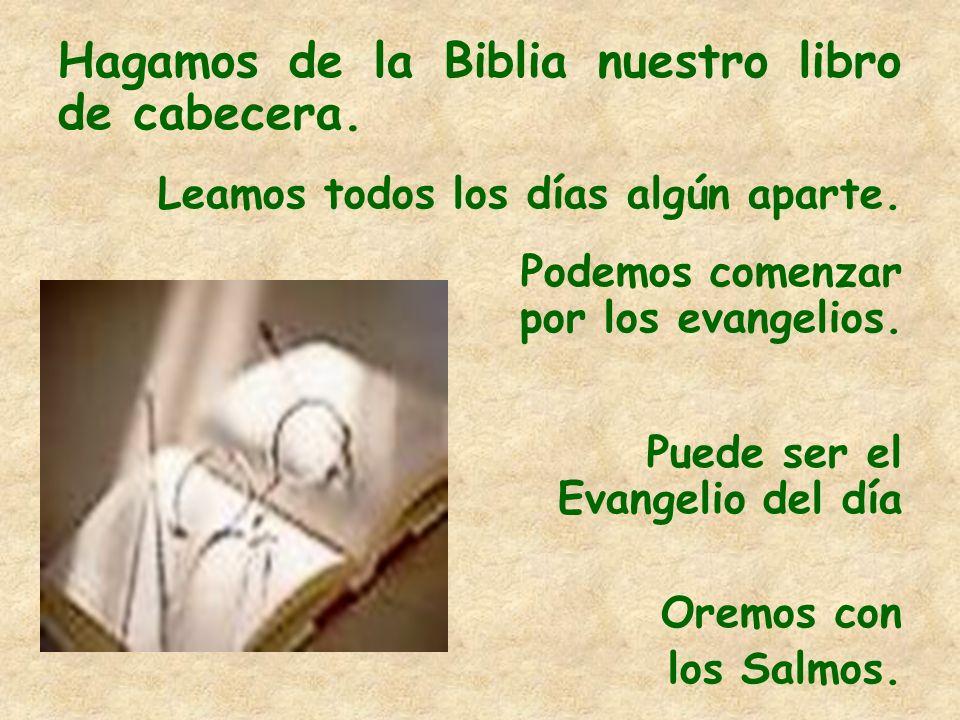Hagamos de la Biblia nuestro libro de cabecera.