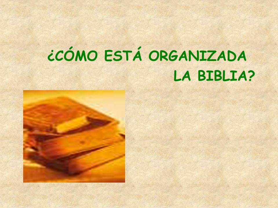 ¿CÓMO ESTÁ ORGANIZADA LA BIBLIA