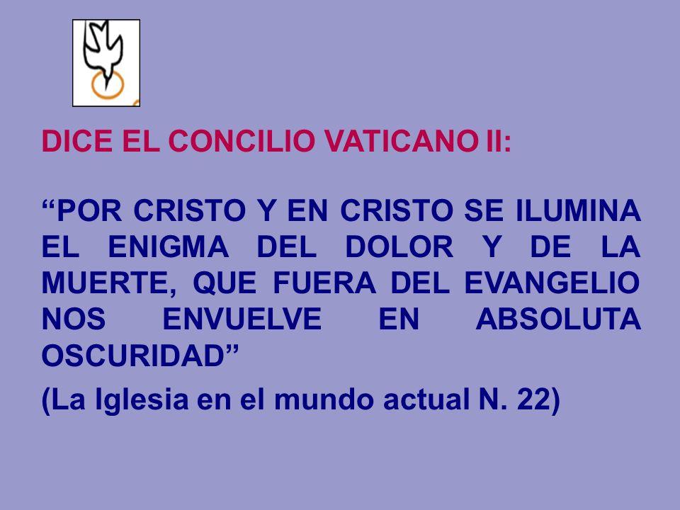 DICE EL CONCILIO VATICANO II: