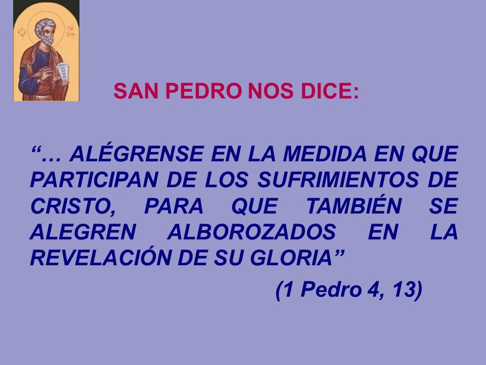 SAN PEDRO NOS DICE: