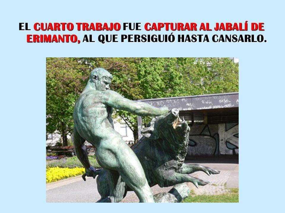 EL CUARTO TRABAJO FUE CAPTURAR AL JABALÍ DE ERIMANTO, AL QUE PERSIGUIÓ HASTA CANSARLO.