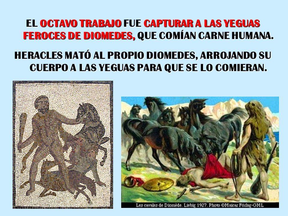 EL OCTAVO TRABAJO FUE CAPTURAR A LAS YEGUAS FEROCES DE DIOMEDES, QUE COMÍAN CARNE HUMANA.