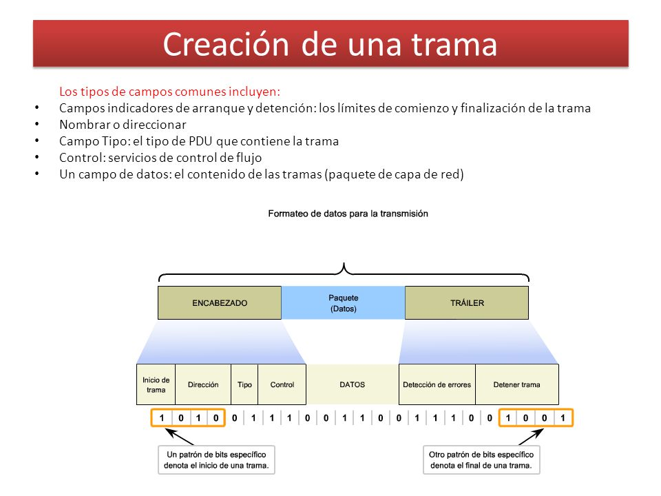 Creación de una trama Los tipos de campos comunes incluyen: