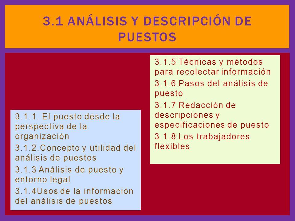 3.1 Análisis y descripción de puestos