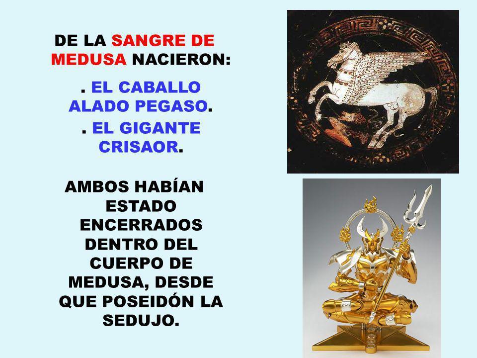 DE LA SANGRE DE MEDUSA NACIERON:. EL CABALLO ALADO PEGASO