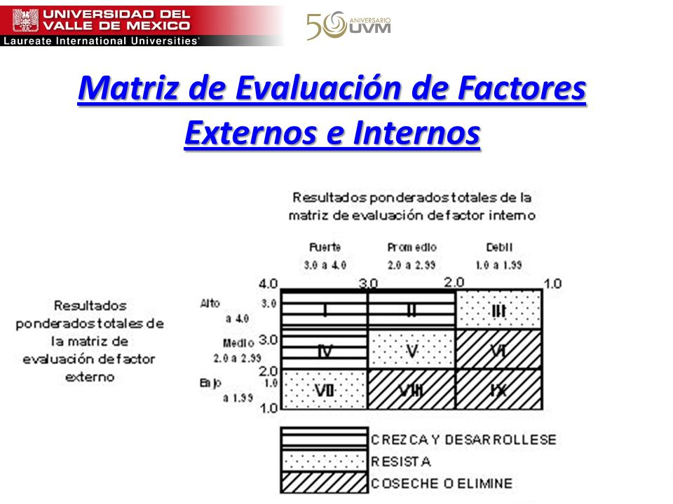 Matriz de Evaluación de Factores Externos e Internos